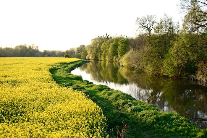 Landscape of Normandy