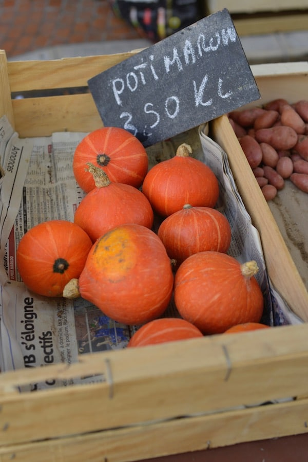 small pumpkins for sale