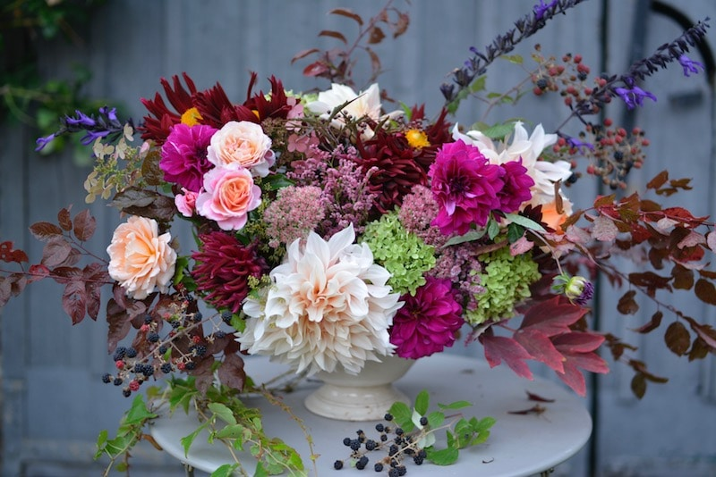 therapeutic bouquet of dahlias and roses