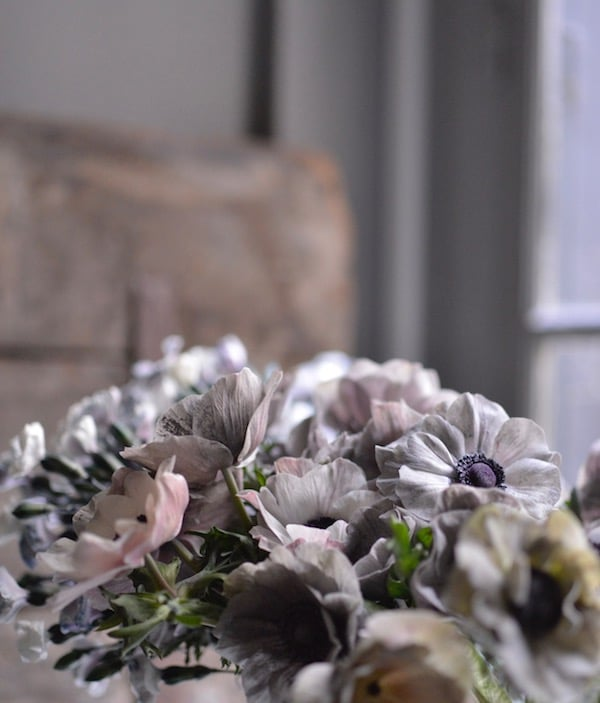 flowers seen in the january-february issue of my french country home magazine