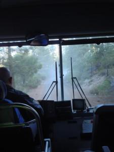 Bizz Johnson - Bus ride