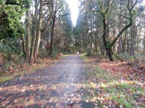 EWEB Run to Stay Warm -