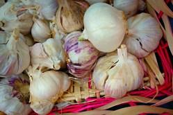 garlic-1522739_1920