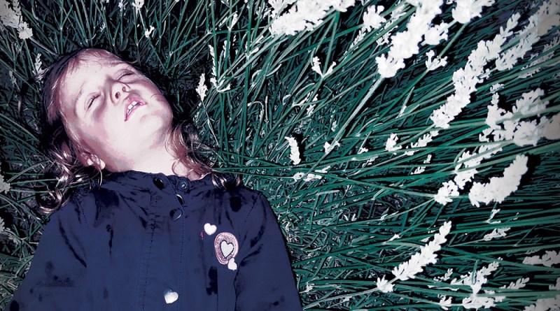 "News: NOVA-SPES präsentieren neues Album ""2020"""