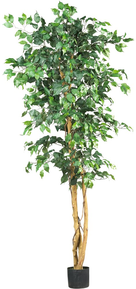 Best 6 Large Artificial Ficus Silk Tree Fake Plant Potted This Month