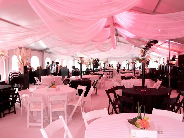 Best Proevents Event Marketing Planning Services In Jamaica This Month