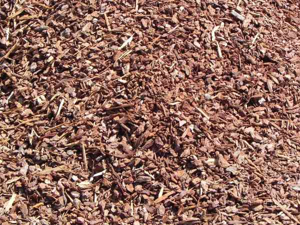 Best Garden Soil And Bark – Brentwood Ca Brentwood This Month