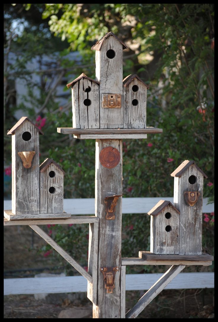 Best 20 Birdhouse Designs Ideas On Pinterest Diy This Month