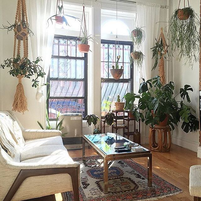 Best All These Hanging Plants From Quinncasabk Have Got Us This Month