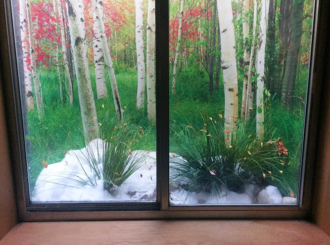 Best Decorative Window Well Liners Over 24 Decorative Scenes This Month