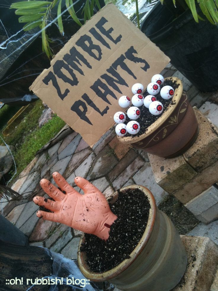 Best 47 Best Images About Zombie Run On Pinterest This Month
