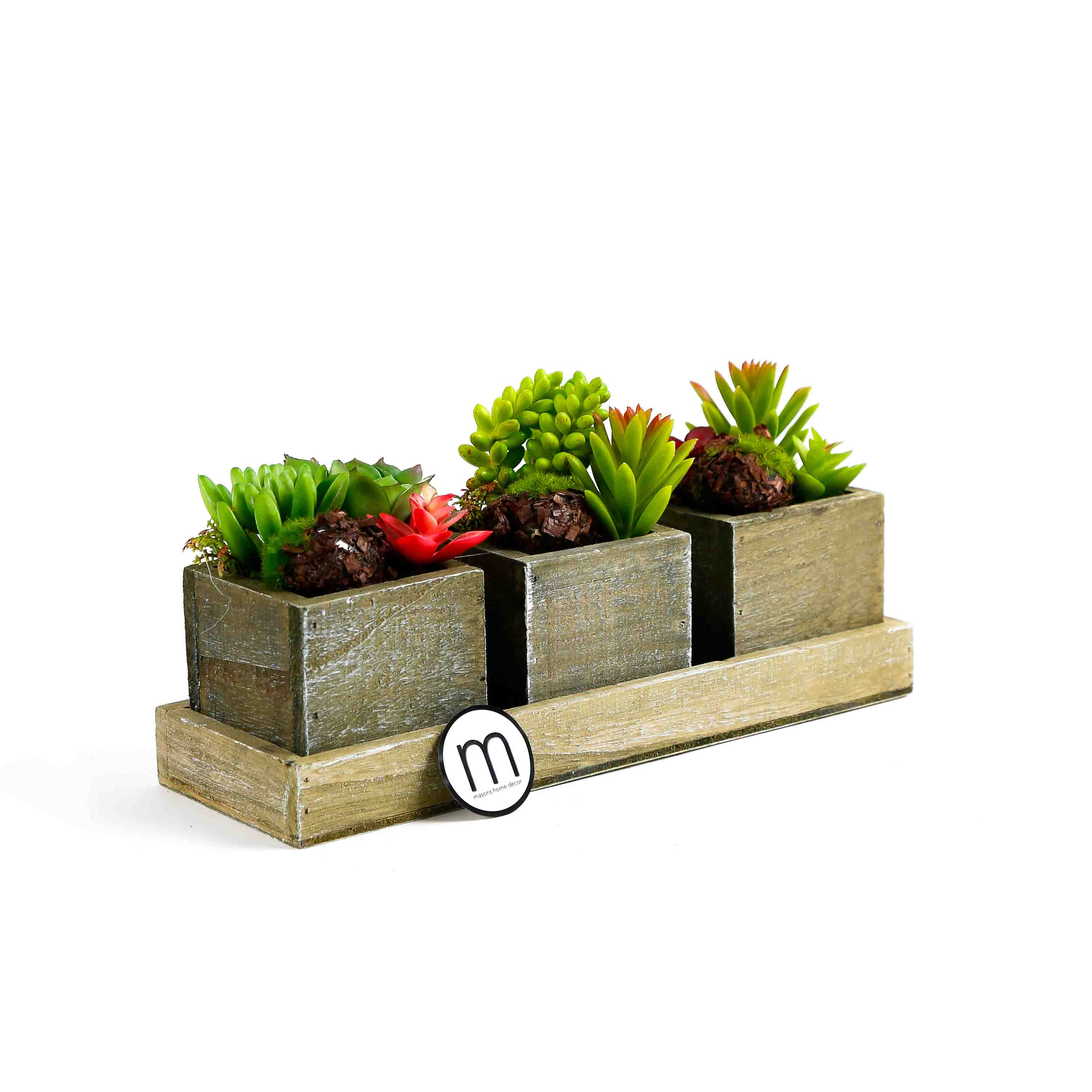 Best Etrusche Artificial Plants In Pots With Tray Masons This Month