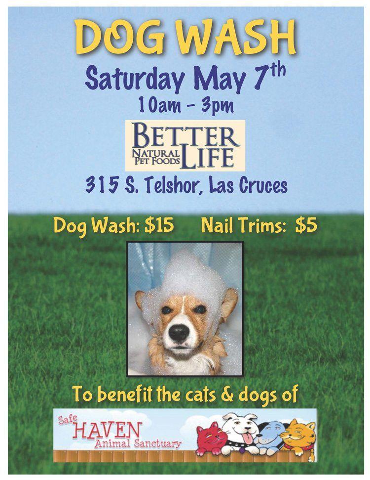 SHAS Dog Wash at Better Life