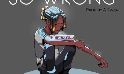 Dayonthetrack – So Wrong