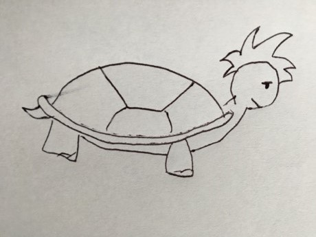 Turtle - slow and steady wins the race