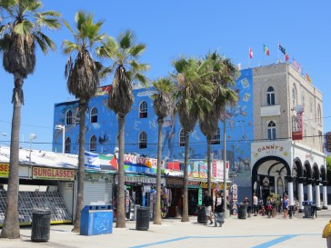 A good look at the Venice Beach boardwalk - all sorts on this path.