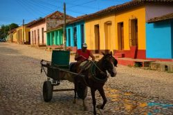 A working man with horse in Trinidad Cuba