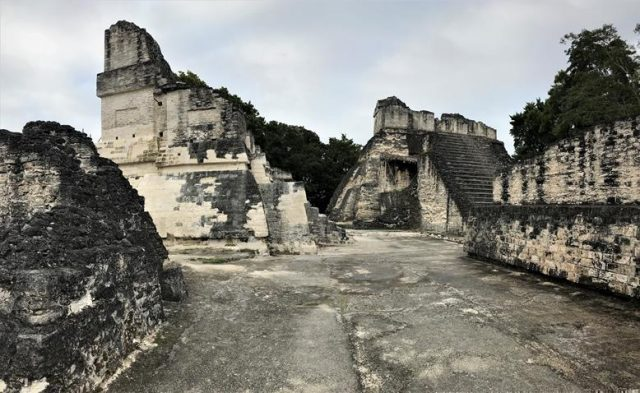 One of the remainders of Tikal