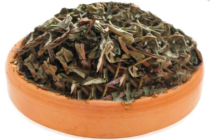 dandelion-herbal