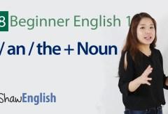Article + Noun