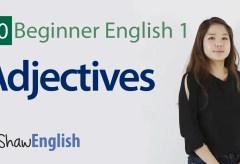 Beginner Adjectives