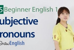 Subjective Pronouns