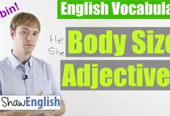 English Body Size Adjectives