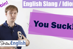English Slang / Idioms: This Sucks! 관용어와 숙어의 학습