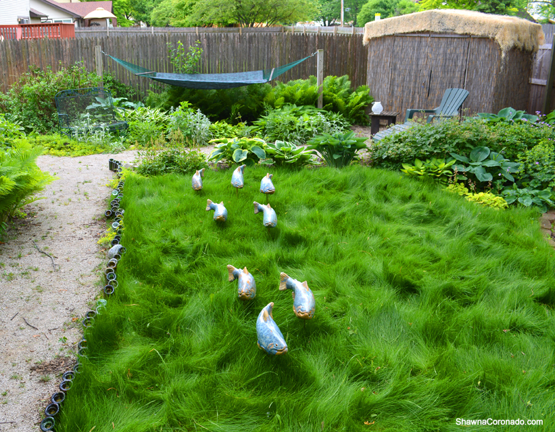 No Mow Grass Update and Fish In The Garden on No Mow Backyard Ideas id=72467