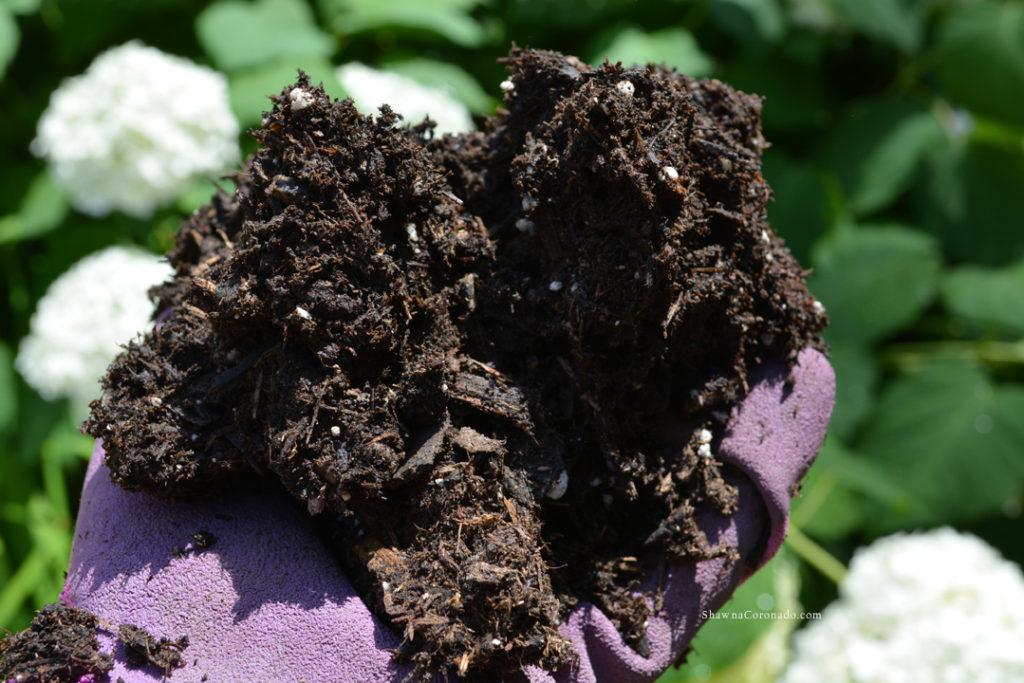 Soil Mixture Raised Vegetable Garden