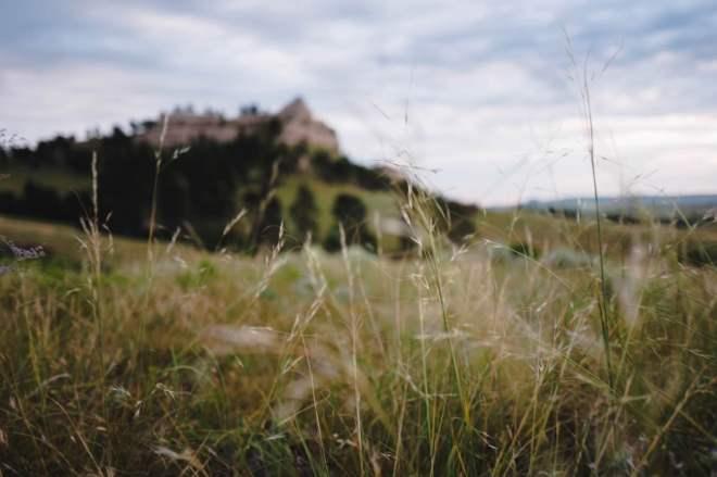 McKenzie Pass shot with the Leica Q