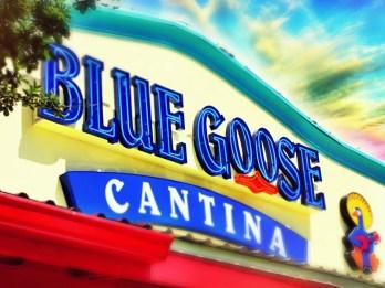 Blue Goose Cantina Data Breach