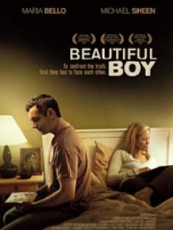 beautifulboy poster button