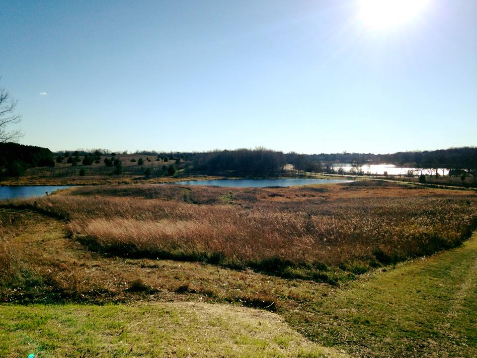 Hyland Lake Park Reserve Bloomington Minnesota