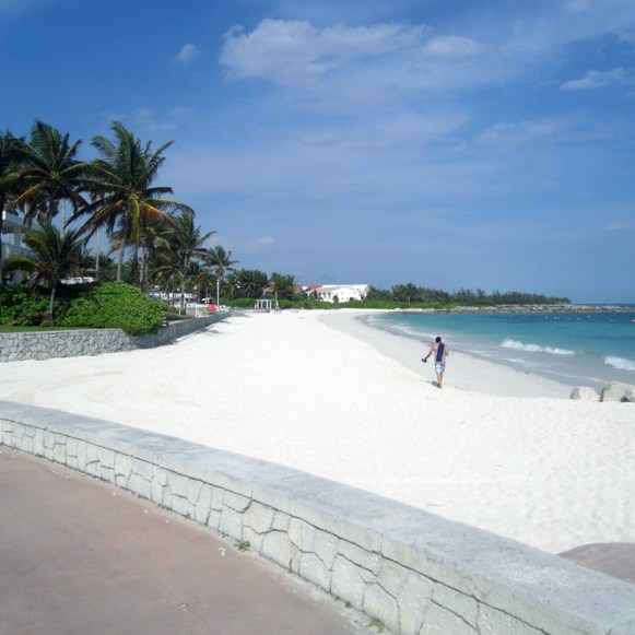 Grand Bahama Island Weather In January