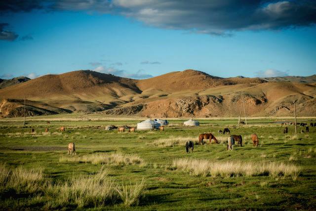horseback riding mongolia