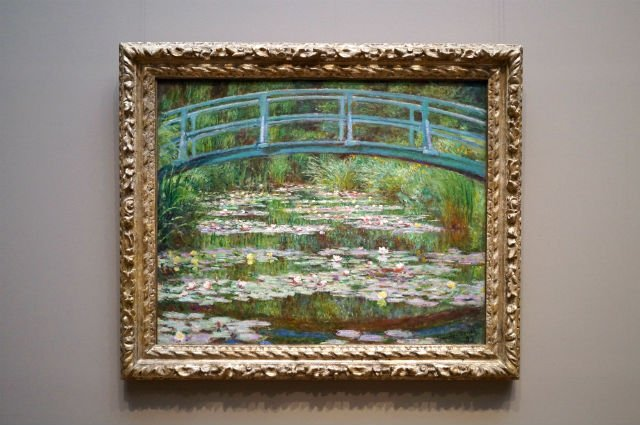 Highlights of Washington DC - Lillies by Monet