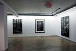 David Conn installation Return - Artspace 111  2012