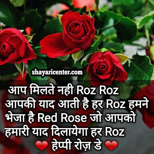 red rose day shayari