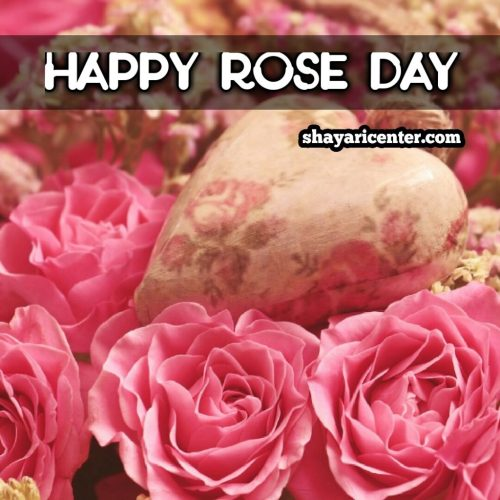 wish a rose day shayari for girl
