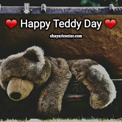 best quotes for a teddy day