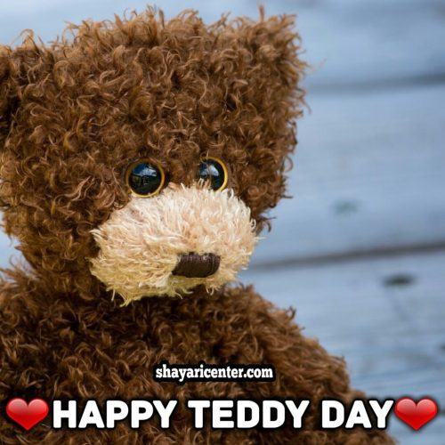 poetry of happy teddy day for boyfriend