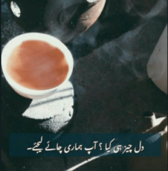 chai shayari poetry