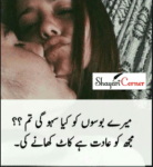 Double Meaning Shayari in Urdu/Hindi (Adult Funny Poetry)