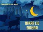 Bakra Eid Shayari in Hindi (Bakra Eid Poetry in Urdu)