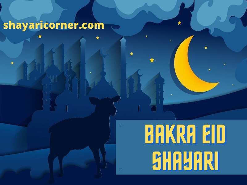 bakra eid shayari