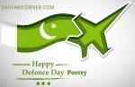 Defence Day Shayari Urdu (Youm E Difa Poetry in English)