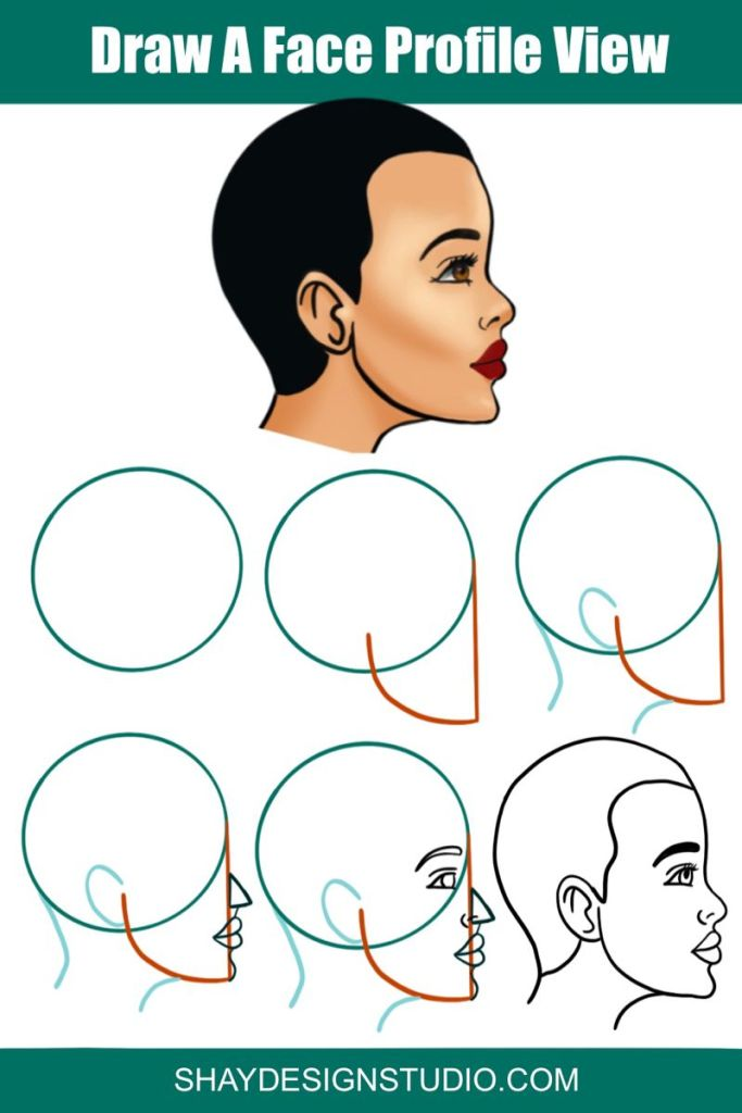 Draw the head in side view step by step