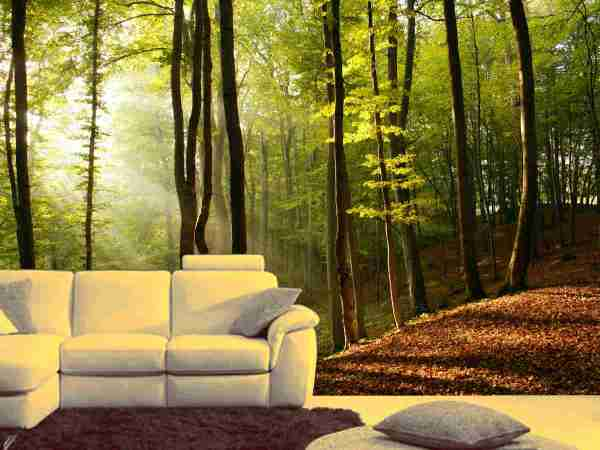 photo wall murals Selecting a Photo for Custom Wall Mural - Wallpaper Installation | Vancouver, BC