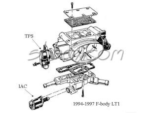 TPI and LT1 throttle body differances?  CorvetteForum